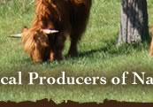 Highland Farm :: Riner, Virginia :: Local Producers of Natural Pasture Raised Beef